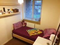 Single room in a friendly flatshare in Putney/ Barnes/ East Sheen/ SW15