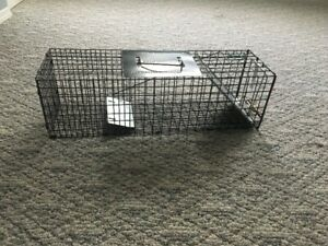 Small animal (squirrel) trap