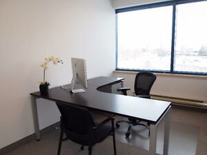 New Co-Working Space in Burlington (Private, Shared & Virtual) Oakville / Halton Region Toronto (GTA) image 10