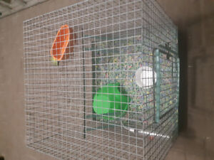 Leveled Cage NEW Price Will Pull out tray for Easy cleaning!!!!!