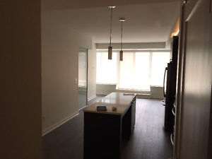 Executive downtown apt 1 bedroom + den for Sublet Sept - May
