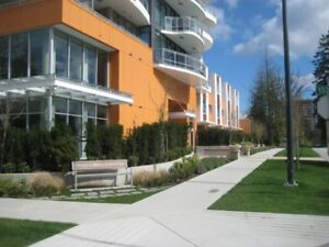 $2250 / 3br - 1400ft2 - New 3bd town house in Surrey Central