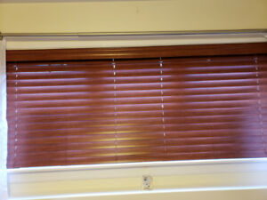 Nine (9) Hunter Douglas Blinds in our house since new 5 yrs ago