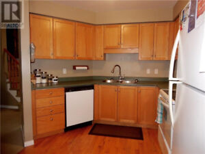 Home appliances- dishwasher
