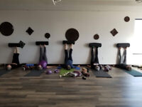 Therapeutic Yoga for your Back, Core and Pelvic Floor!