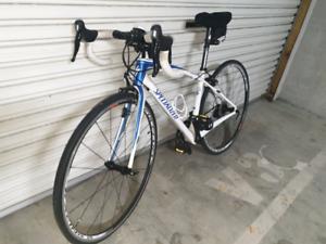 100% carbon ladies road bike