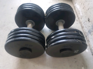 2 x 85 lbs dumbbells total 170lbs