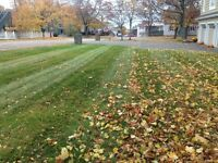 **FALL CLEAN UP, LEAF REMOVAL, LANDSCAPING**