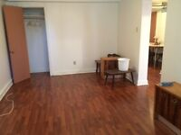 Spacious and well lit bacherlor's for Rent. Heated & furnished
