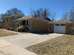 Beautiful North End Family Home for Rent!