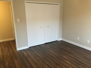 Newly Renovated 1 Bedroom Apartment!
