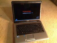 Toshiba Laptop Windows 7 Office Webcam