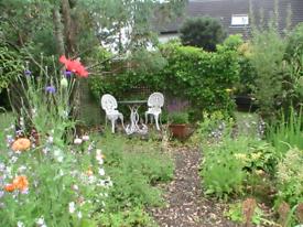 Mullview garden and home maintenance.