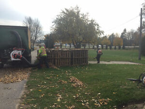 Fall / Leaf / Yard cleanup / Eavestrough Cleaning Kitchener / Waterloo Kitchener Area image 2