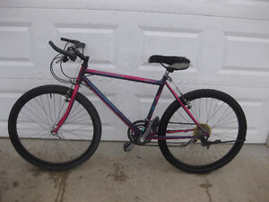 RALEIGH PORTAGE 21 speed mountain bike in excellent condition.