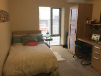 LUXE WATERLOO PHASE II SUBLET (MAY-AUGUST)
