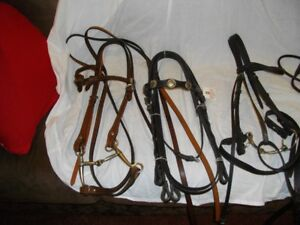 Saddles and Assorted Horse Tack for Sale