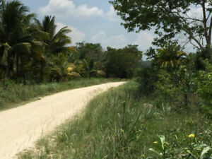 Attractive 94 Acres property just 7 miles from Westrac Limited i