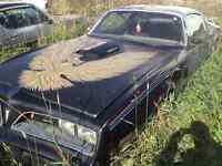 WANTED TRANS AM  TOP DOLLAR PAID
