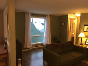1 Bedroom Rental Apartment in Downtown St. Stephen for June 1st