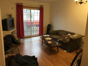 2bedroom apartment downtown Kingston