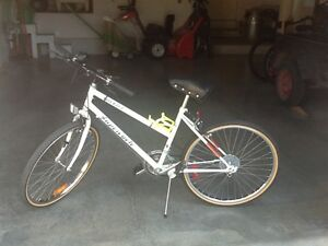 Bicycle - Ascent Super Cycle
