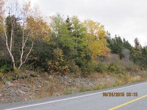 For Sale Commerical Land 8.56 acres Holyrood Access Right St. John's Newfoundland image 3