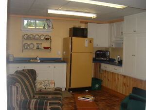Clean Private 2-bedroom Apartment for Fleming Students Kawartha Lakes Peterborough Area image 3