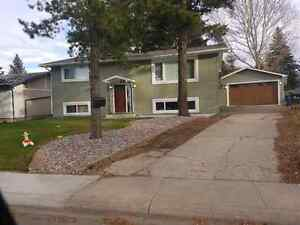 House for rent sherwood park Strathcona County Edmonton Area image 1