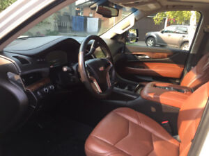 Ultimate Mobile INTERIOR Car Detailing BEST PRICES FALL SPECIAL