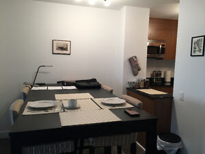 1 Bed (3.5) Furnished Apartment Downtown -  2 Months Free Rent