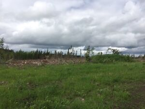 159 Acres in Goodridge Alberta (Bonnyville MD) Strathcona County Edmonton Area image 7