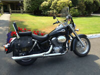 Honda Shadow ACE 750 (2001) - Great Bike!
