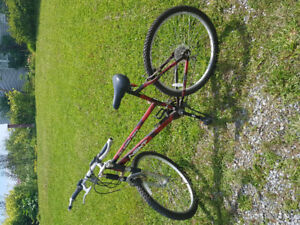 2 bikes for sale. Asking $80 each.  Both have 26in tires.