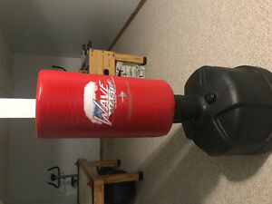 Wave Master Punching Bag (perfect condition)
