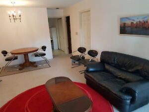 Lower Floor of House, Suite For Rent