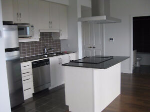 2 bedroom apartment for rent from May 1st - no pets