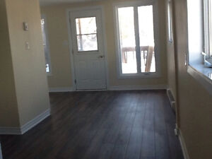 Delightful three bedroom house very close to Ottawa