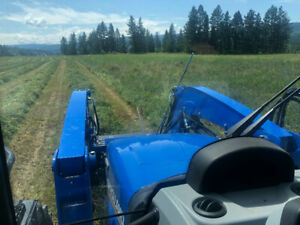 Quality hay for sale
