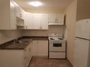 Renovated 1 Bedroom Apartment - Top Floor - Partial River View