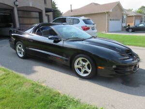 Firebird Trans Am WS6 28,000