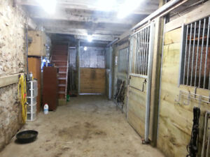 Four horse stalls and two paddocks for rent