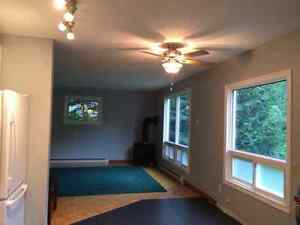 Large bright 1 bedroom apartment Gravenhurst. Available July 1st