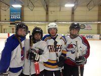 Shinny Hockey in the South, TONIGHT!