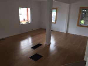 Large house with basement  Heat and Light Incl.