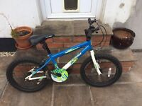 "Boys Apollo Outage 18"" bike"