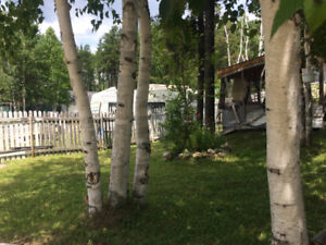 REDUCED $$  Year Round Cottage w guest camp  :)
