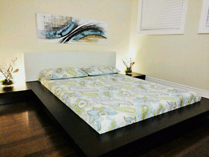 Modern platform bed for cheap!