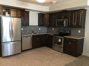 North center luxury suite -griesbach