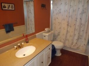 3+1 bedroom elevated bungalow - 98 Nicholson Cres, Amherstview Kingston Kingston Area image 5